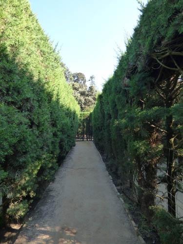 Corredor do labirinto