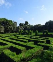 labirinto_horta