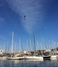marina_portvell