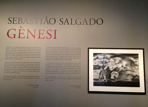 genesis_sebastiao