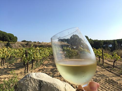 vinho-alella