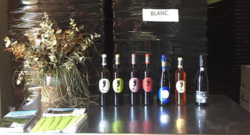 Vinhos produzidos pela vinícola.