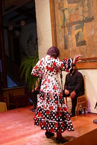 bailarina-flamenco