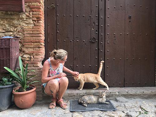 peratallada-gatos