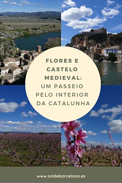 Flores e Castelo medieval (1)